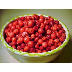Grosella roja liofilizada
